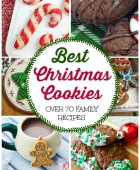 Bloggers Best Christmas Cookies Recipe Collection