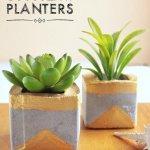 DIY Gold & Concrete Succulent Planters