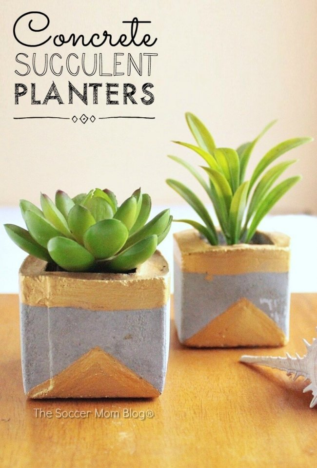 How to make chic gold and concrete succulent planters to bring a touch of green to your home.