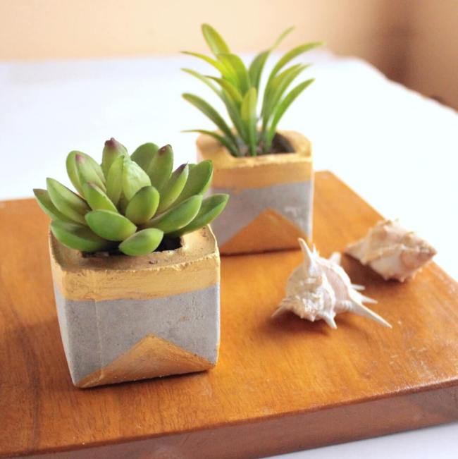 How to make cement planters for succulents and other small houseplants