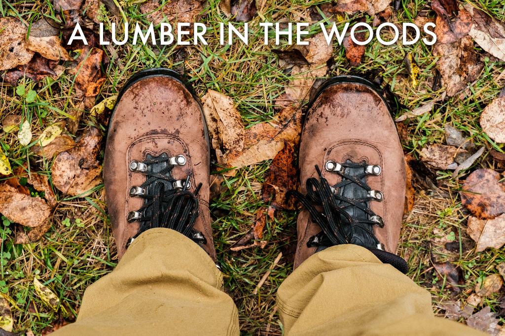 boots-leaves-hike-b