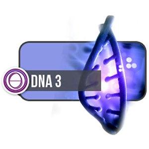thesolarlogos-monica-righi-theta-healing-corso-dna-3