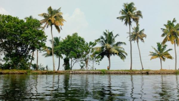 kerala backwaters with strip of land on horizon lined with coconut trees