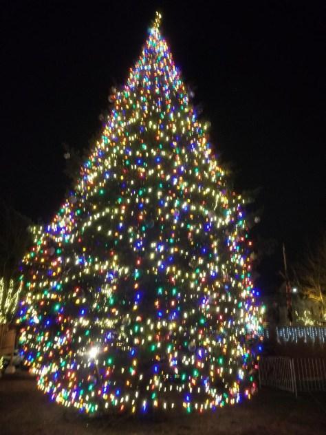 SOMERVILLE 2018 CHRISTMAS TREE LIGHTING, MENORAH LIGHTING, ILLUMINATIONS  TOUR IN DECEMBER - SOMERVILLE 2018 CHRISTMAS TREE LIGHTING, MENORAH LIGHTING