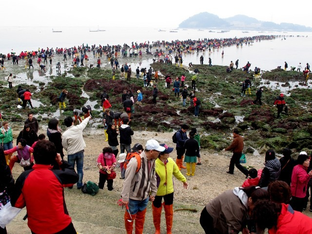 Jindo Miracle Sea Parting Festival, Korea