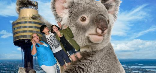Sydney, Australia: Us and a Koala