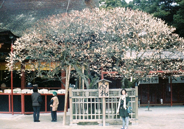 Fujica Film: Fukuoka, Japan