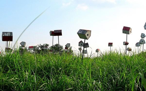 Seoul, Korea: Sky Park, Haneul Park (하늘공원)