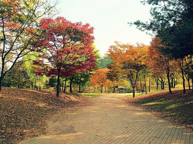 Mapo-gu, Seoul: World Cup Park, Nanjicheon Park