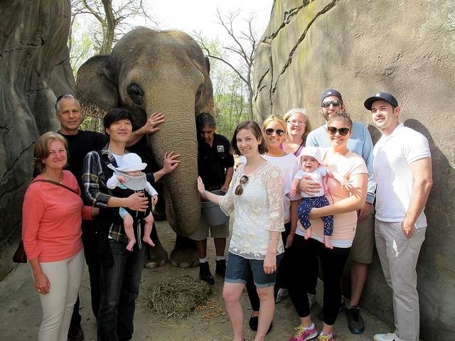 April On The Go: Zoo, elephant