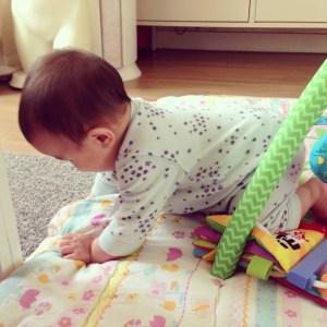 infant starting to crawl