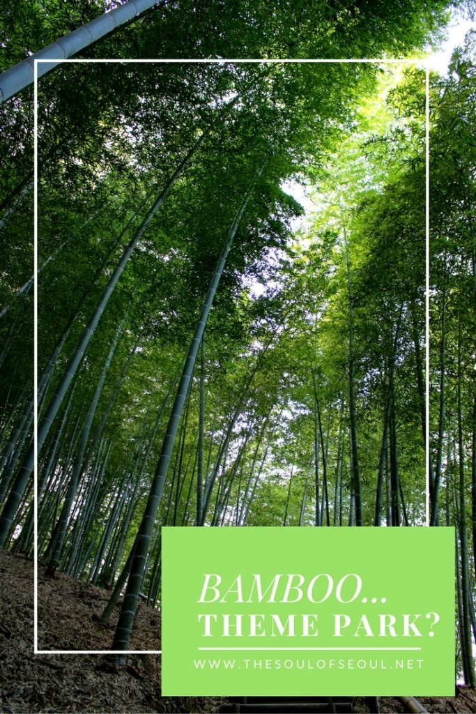 Bamboo... Theme Park?