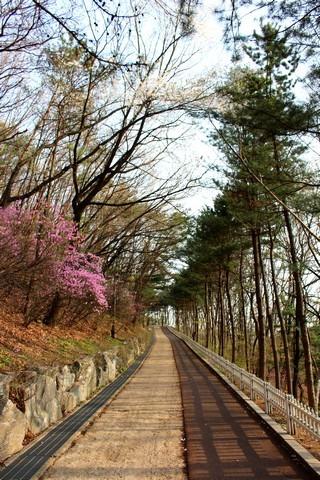 Ujangsan, Gangseo-gu, Seoul, Korea, mountain park