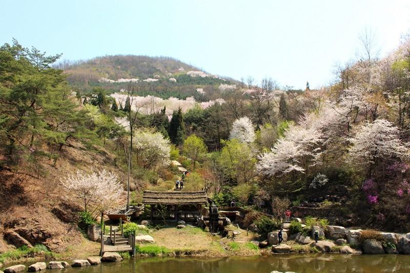 Ansan Mountain, Seodaemun-gu, Seoul, Korea
