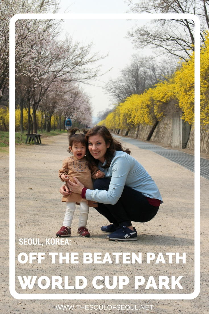 Off The Beaten Path in World Cup Park To See Spring Flowers: World Cup Park has some gorgeous natural beauty but most of it goes overlooked. In the spring, this off the beaten path is picturesque and lined with cherry blossoms and yellow flowers in Seoul, Korea.