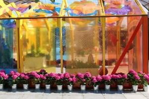 Ilsan Lake Park, Flower Festival