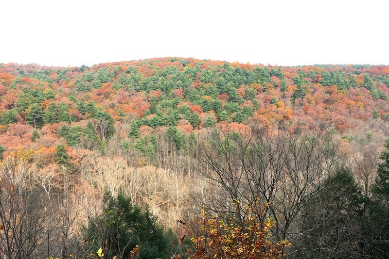 Mohican State Park, Loudonville, Ohio, USA