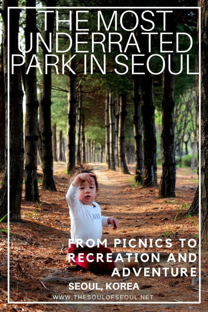 The World Cup Parks is a system made of five individual parks that is the most underrated parks system in Seoul, Korea. The diversity it provides and recreational activities as well as natural landscape is just stunning and should NOT BE overlooked.
