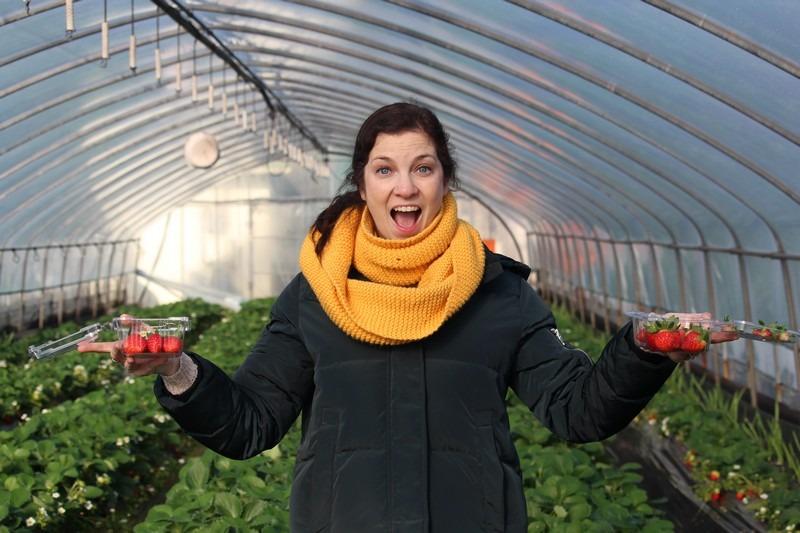 Daega Farm, Strawberry Picking, Namyangju, Korea: Hallie Bradley