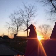 Día 36 - Con el sol calentándonos la espalda en un día frío