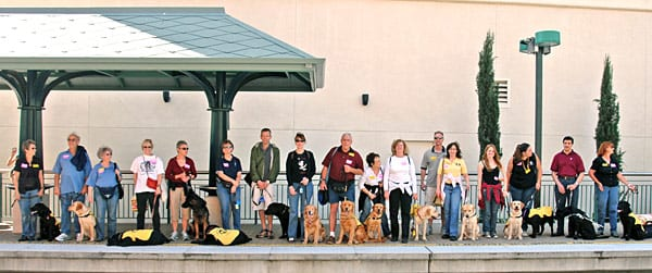 Puppy Raisers from Guide Dogs of America line up at Metro Gold Line Del Mar Station for the train ride back to Union Station after adventurous outing to Pasadena. Metro's Agustin Moreno, second from right with guide dog Shadow, were role models for the impressionable and somewhat awe-struck canine companions and their very well-behaved trainers.