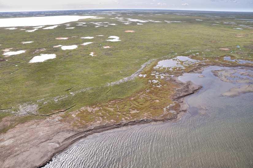 The Beaufort Sea shoreline in Alaska. Photo by ShoreZone via Flickr creative commons.
