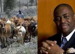 Vigilante: Miyetti Allah Furious, Threatens To Invade Igboland
