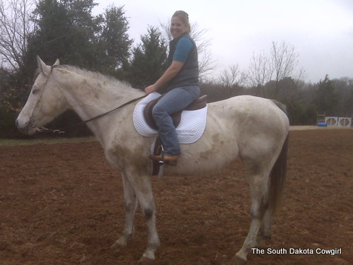 Nora as an English Horse