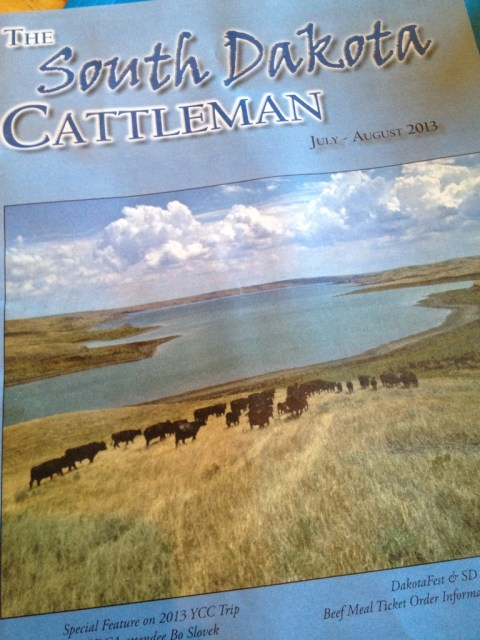 south dakota cattleman's magazine, magazine cover, cows, ranch life