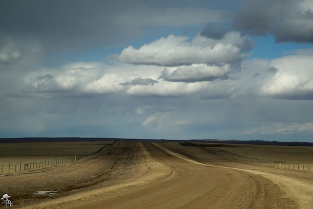 south dakota cowgirl photography, south dakota, cloudy day, ranch lands, ranching, ranch photography, south dakota landscapes