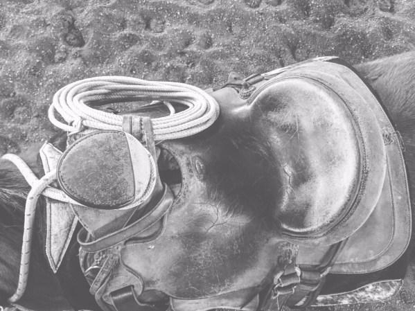 A Chas Weldon wade tree saddle.