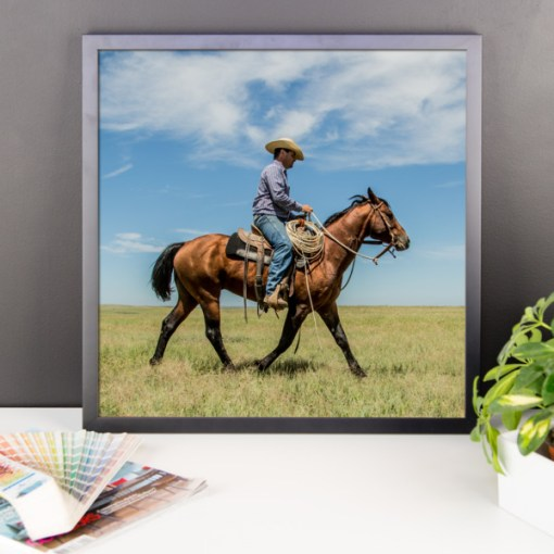 Trot on Cowboy, Framed Wall Art