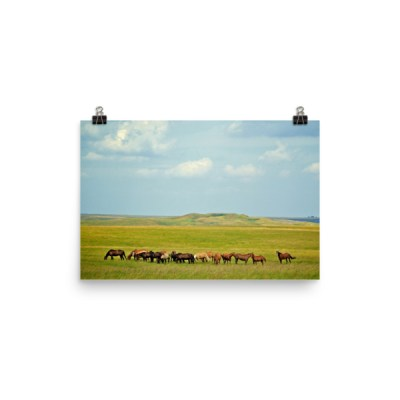 Scatter Butte Premium Photo Paper Poster