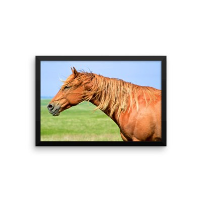 Annie in Color Framed photo paper poster