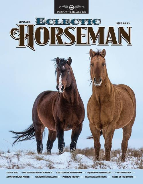 eclectic horseman magazine, south dakota cowgirl photography, magazine cover, equine art, horses in the snow