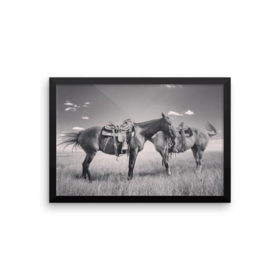 """Head to Tail"" Framed Premium Poster"
