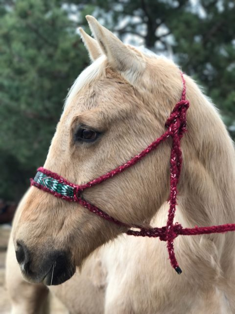 dx designs beaded braided halter