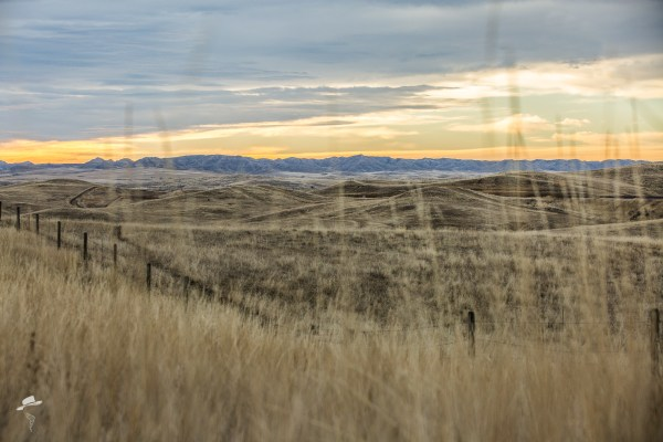 Wyoming, #ThatsWY, Mountains, South Dakota Cowgirl Photography, Sunrise in Wyoming