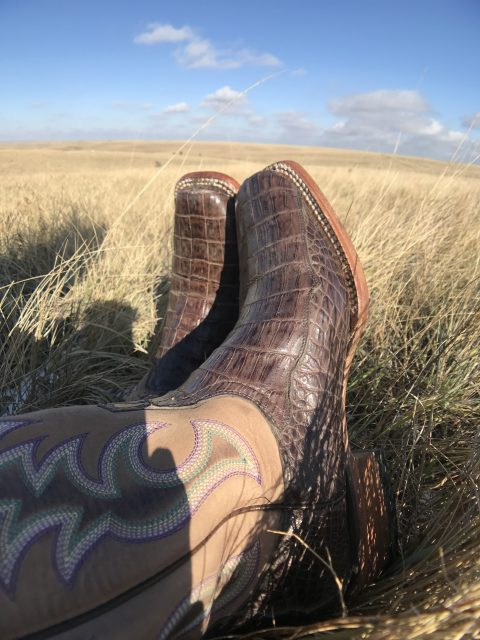 Caiman Boots from Cavenders