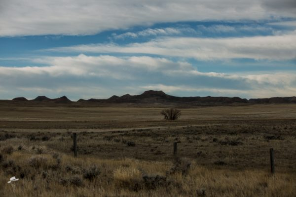 ThatsWy, Wyoming, Wyoming Trip, South Dakota Cowgirl Photography