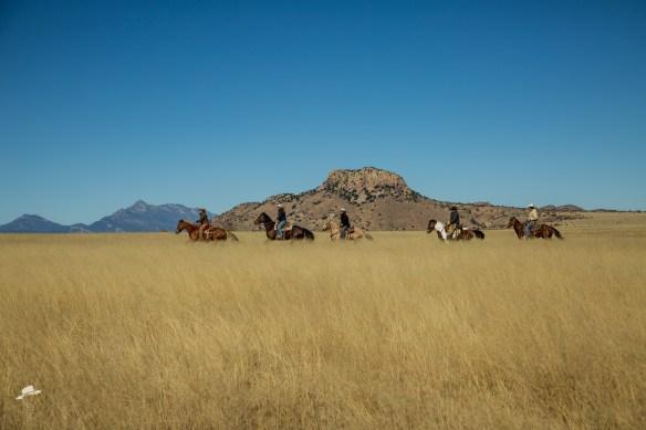 Circle Z Guest Ranch, Loping Rides, San Rafael Valley ride, Circle Z