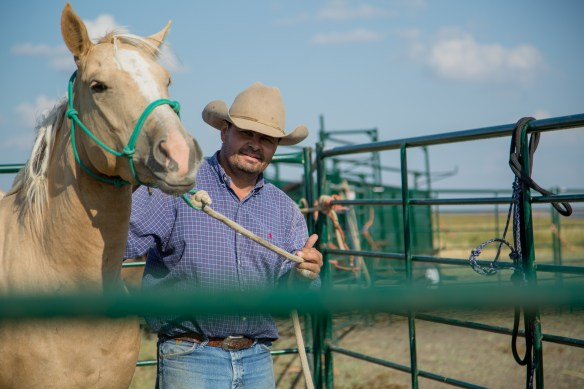 Horsemanship and Horse Training