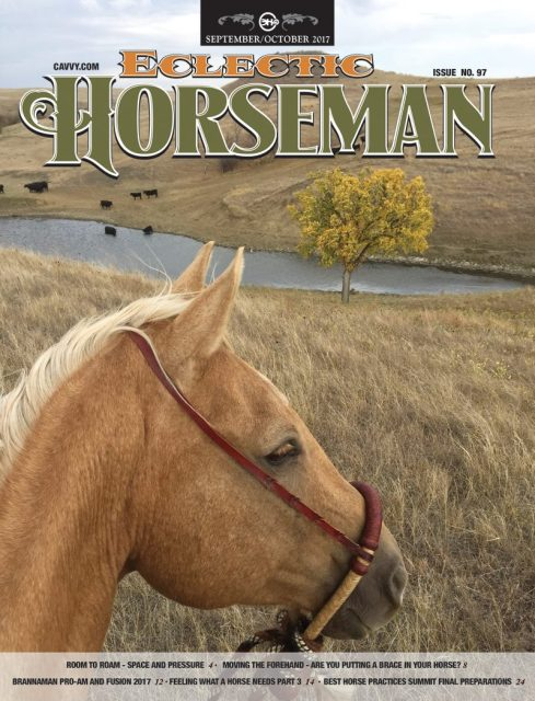 eclectic horseman magazine cover, south dakota cowgirl photography