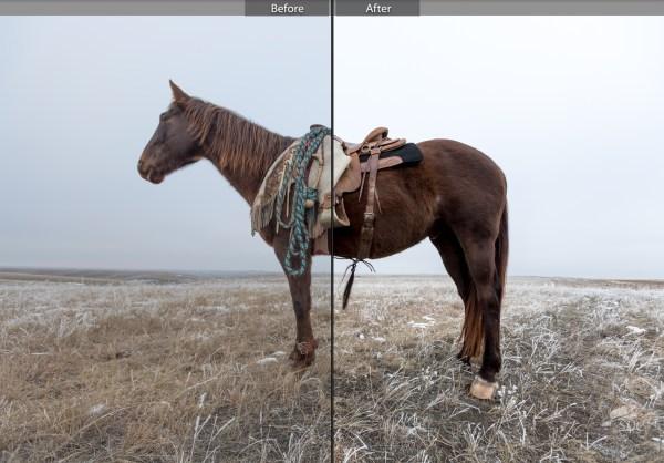 south dakota cowgirl photography, winter preset, winter shadows