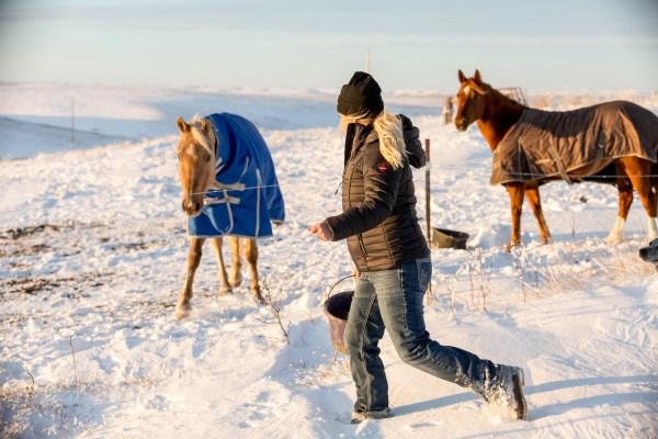 refrigiwear, coat, cold weather gear, winter gear, winter cowgirl gear