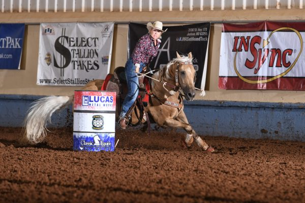 a career well-run, no average joe 022, avie, the south dakota cowgirl