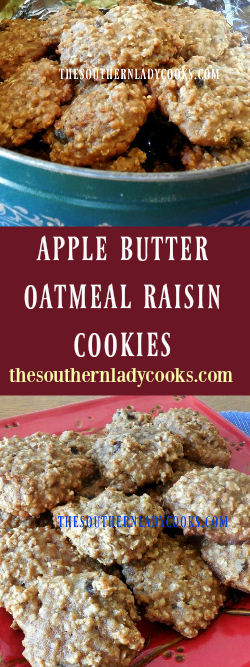 the-southern-lady-cooks-apple-butter-oatmeal-raisin-cookies