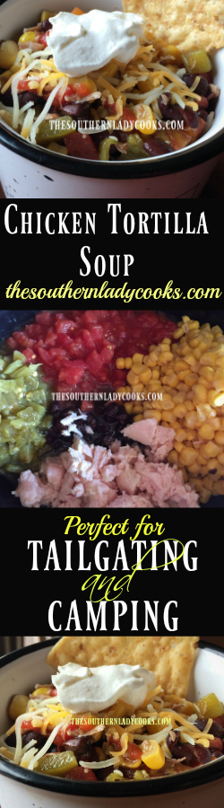 the-southern-lady-cooks-easy-chicken-tortilla-soup