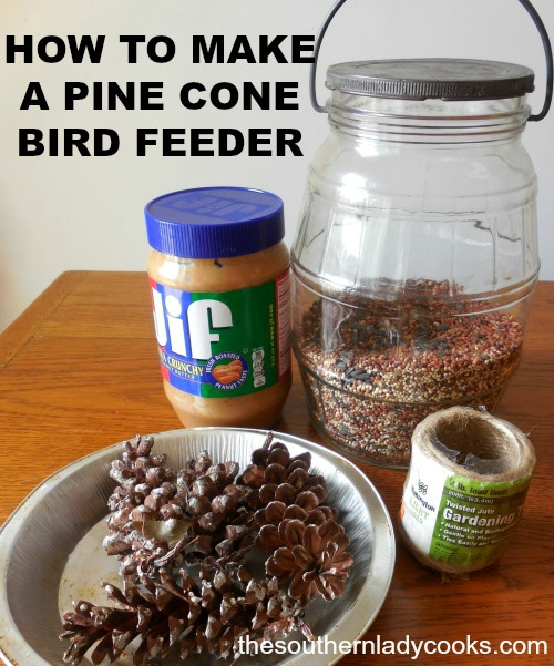 how-to-make-pine-cone-bird-feeders3