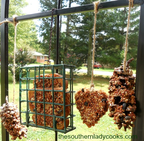 how-to-make-a-pine-cone-bird-feeder4